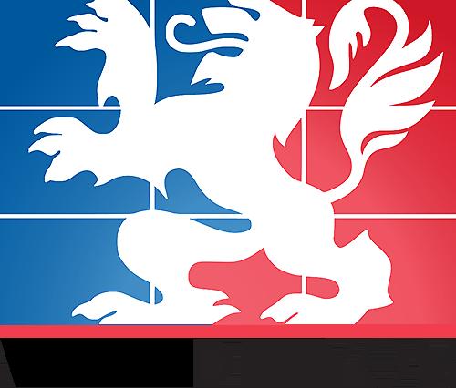 Ville-de-Lyon-logo